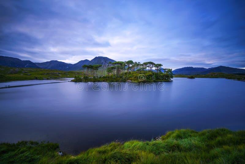 Isla de los árboles de pino en el lago Derryclare en la puesta del sol fotos de archivo libres de regalías