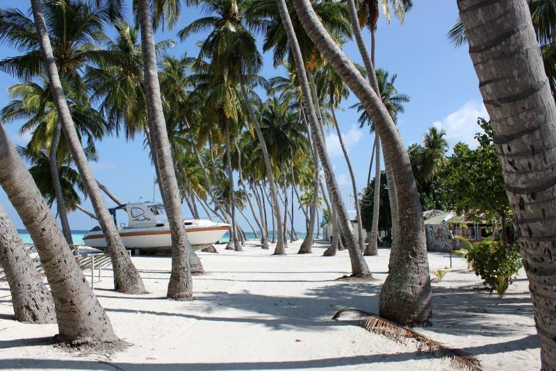 Isla de Maafushi foto de archivo