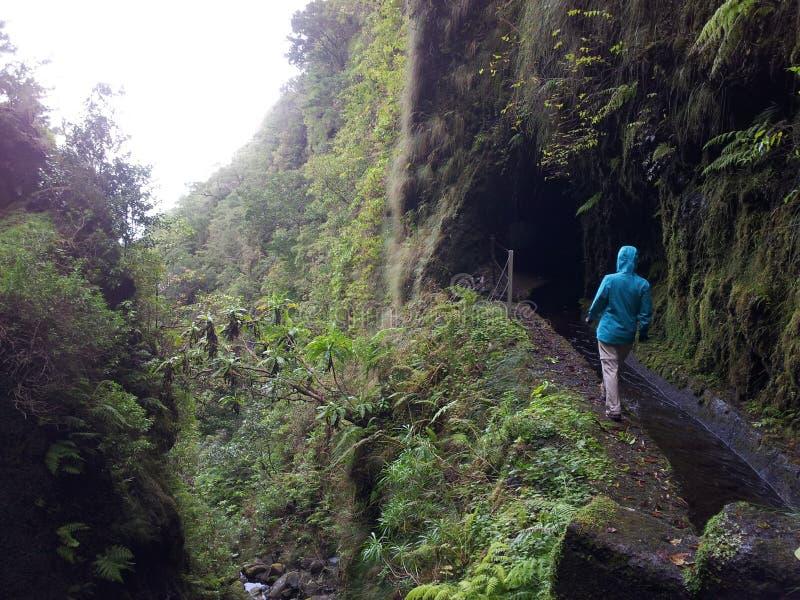 Isla de Madeira fotos de archivo libres de regalías