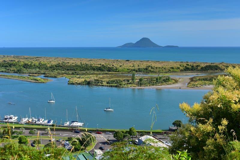Isla de Moutohora cerca de la costa de Whakatane en Nueva Zelanda foto de archivo libre de regalías