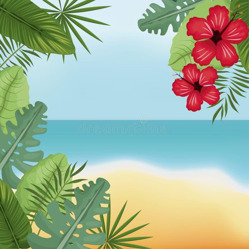 isla de palma del hibisco de la playa de la belleza ilustración del vector