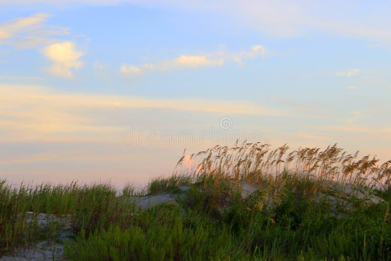 Isla de palmas, Carolina del Sur imagenes de archivo