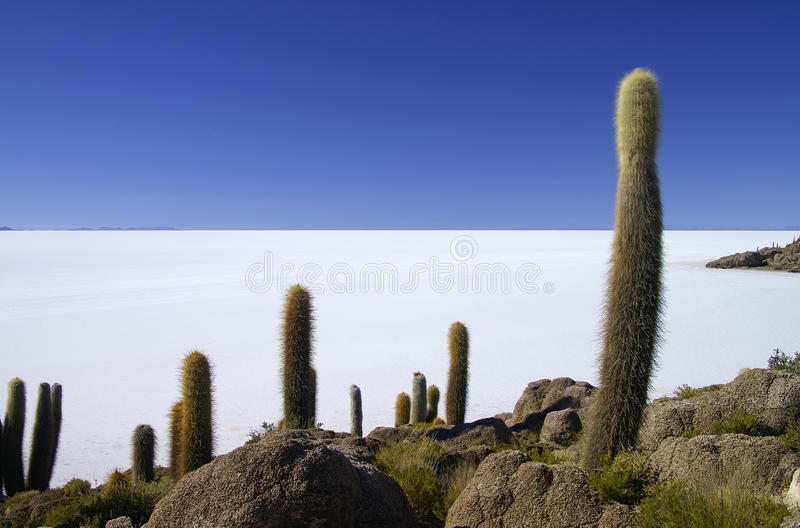 Download Isla De Pescadores stock photo. Image of destinations - 36264662