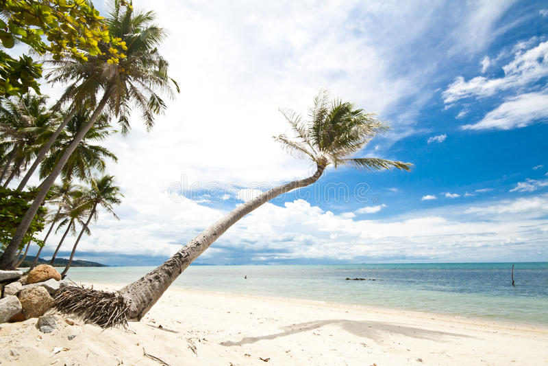 Isla de Samui foto de archivo libre de regalías