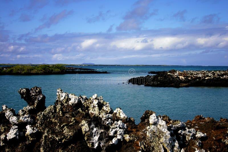 Isla de Tiburon imagen de archivo libre de regalías