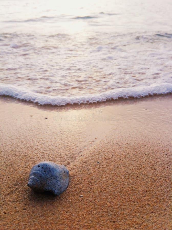 Isla de Tristan fotografía de archivo