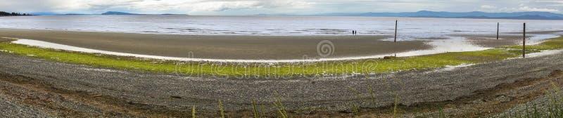Isla de Vancouver de la costa de la playa de Qualicum A.C. Canadá imágenes de archivo libres de regalías