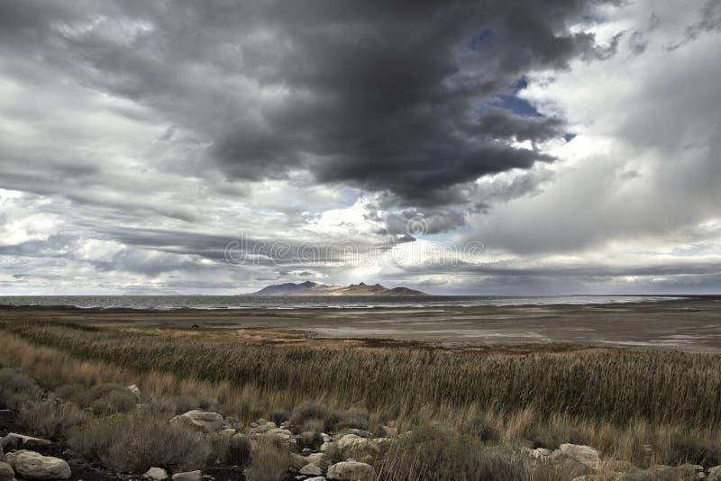 Isla del antílope, parque de estado, Great Salt Lake en invierno Los E.E.U.U., Utah imagenes de archivo