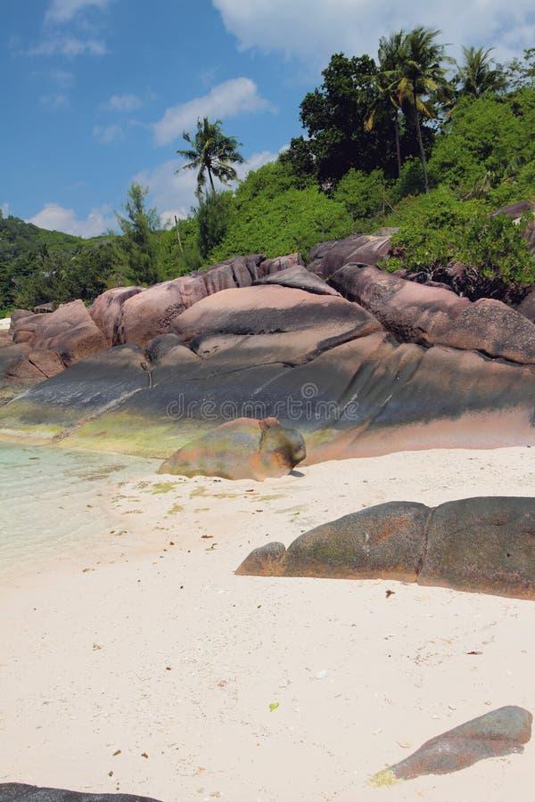 Isla del origen volcánico Baie Lazare, Mahe, Seychelles imagenes de archivo