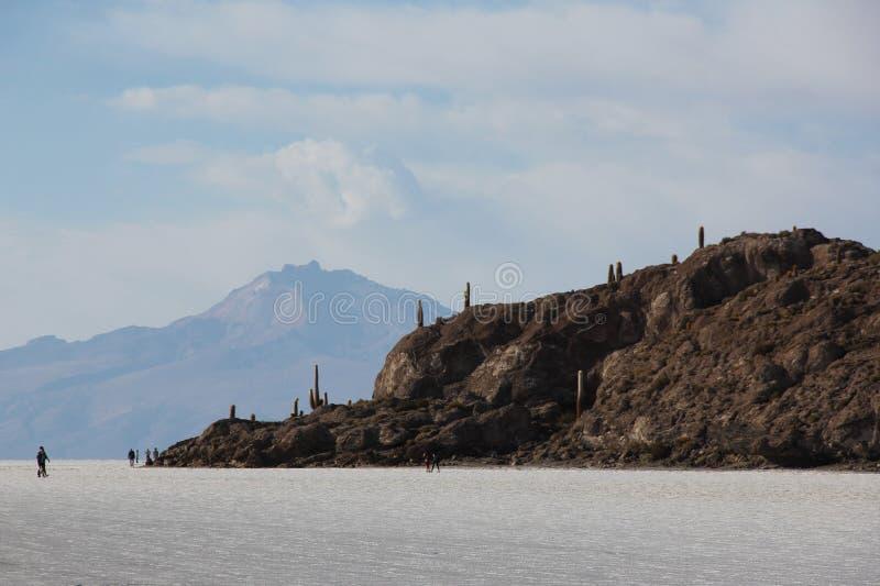 Isla del Pescado em Bolívia fotos de stock