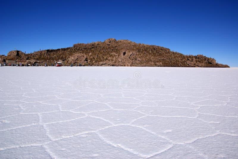 Isla del Pescado su Salar de Uyuni, Bolivia immagine stock libera da diritti