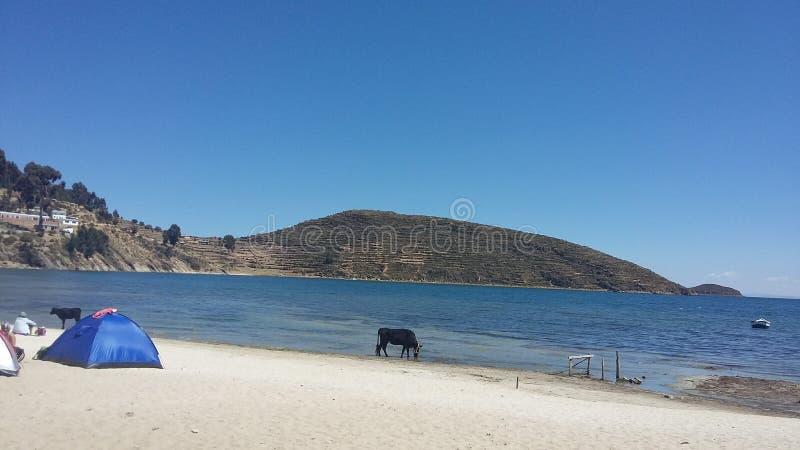 Isla del Sol Titicaca fotografering för bildbyråer