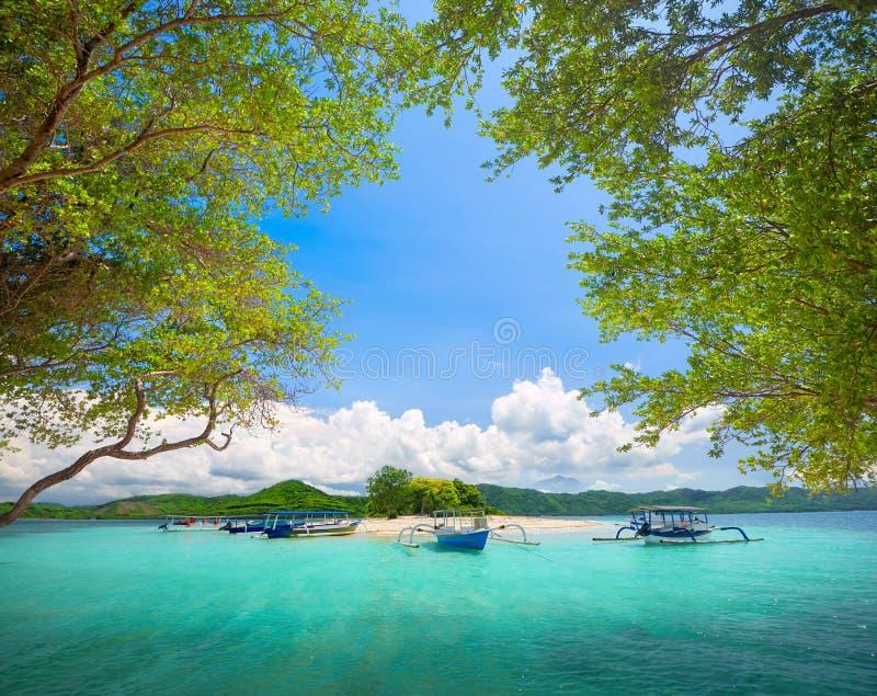 Isla deshabitada tropical hermosa en fondo del mou verde imagen de archivo