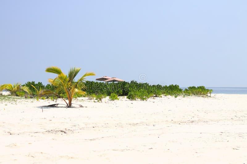 Isla desierta en Maldivas con una pequeña palmera y dos parasoles de playa fotos de archivo