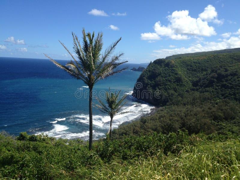Isla grande Hawaii fotografía de archivo