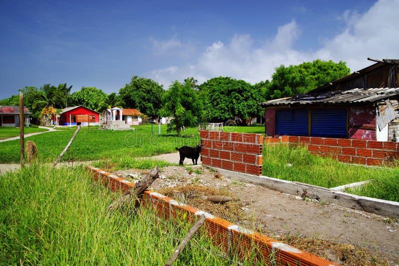 Isla Grande - hus under konstruktion Oavslutat hus för röd tegelsten arkivbilder