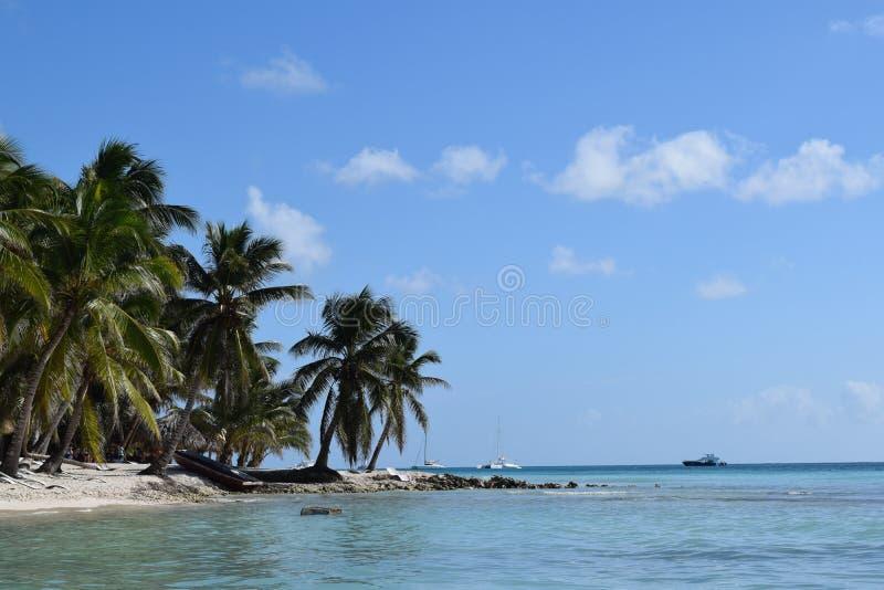 Isla hermosa de Saona foto de archivo