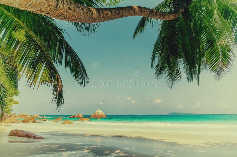 isla hermosa Seychelles del praslin de la playa de Lazio del anse fotos de archivo libres de regalías