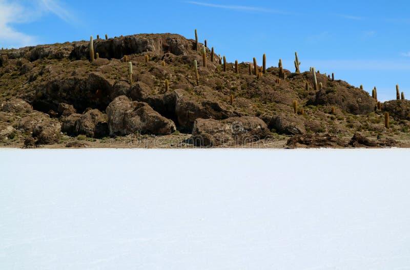 Isla Incahuasi lub Isla Del Pescado, Skalisty wychód po środku Uyuni soli mieszkań w Caquena kantonie Boliwia, Ameryka Południowa obrazy stock
