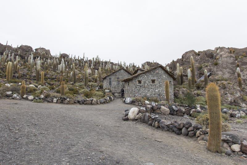 Isla Incahuasi (Pescadores), Salar de Uyuni, Bolivia.  royalty free stock image