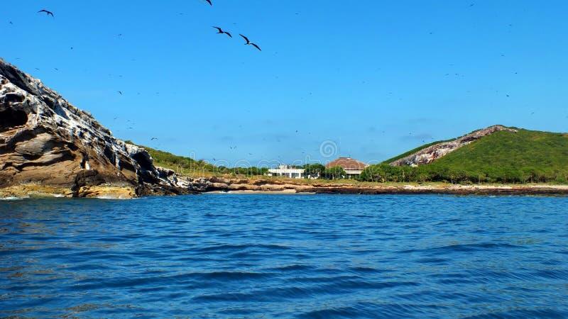 Isla Isabel fuori dalla costa di Mexico's Riviera Nayarit immagini stock libere da diritti