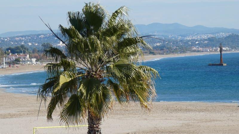 Isla mediterránea admitida fotografía Córcega foto de archivo