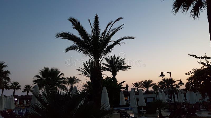 Isla mediterránea admitida fotografía Córcega imagenes de archivo