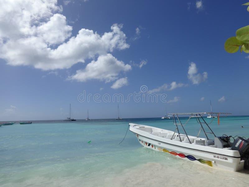 Isla Saona стоковое изображение rf