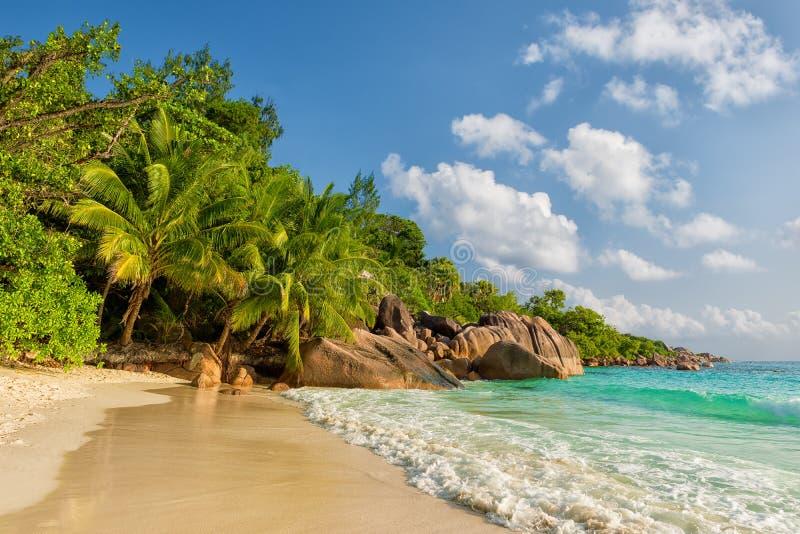 Isla Seychelles del praslin de Anse Lazio fotos de archivo libres de regalías