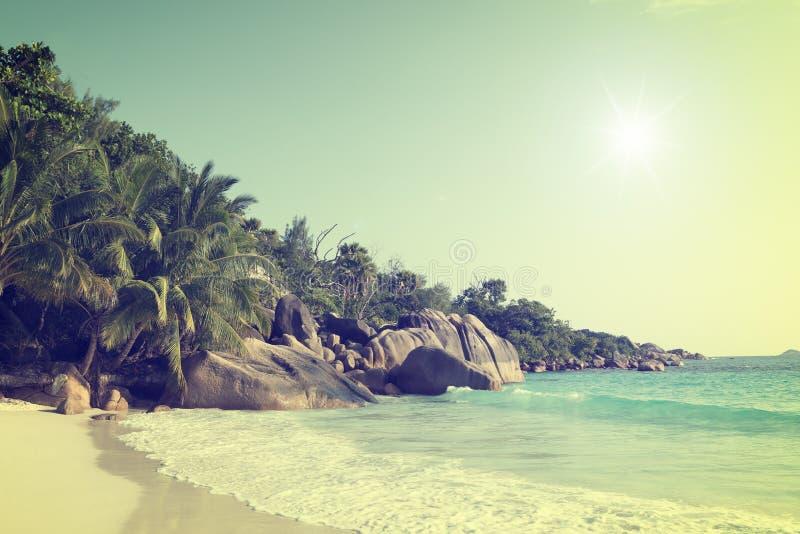 Isla Seychelles del praslin de Anse Lazio foto de archivo libre de regalías