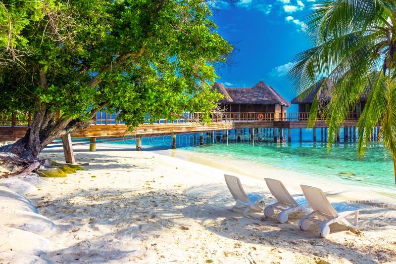 Isla tropical con la playa arenosa, las palmeras, las casas de planta baja del overwater y agua clara del tourquise foto de archivo libre de regalías