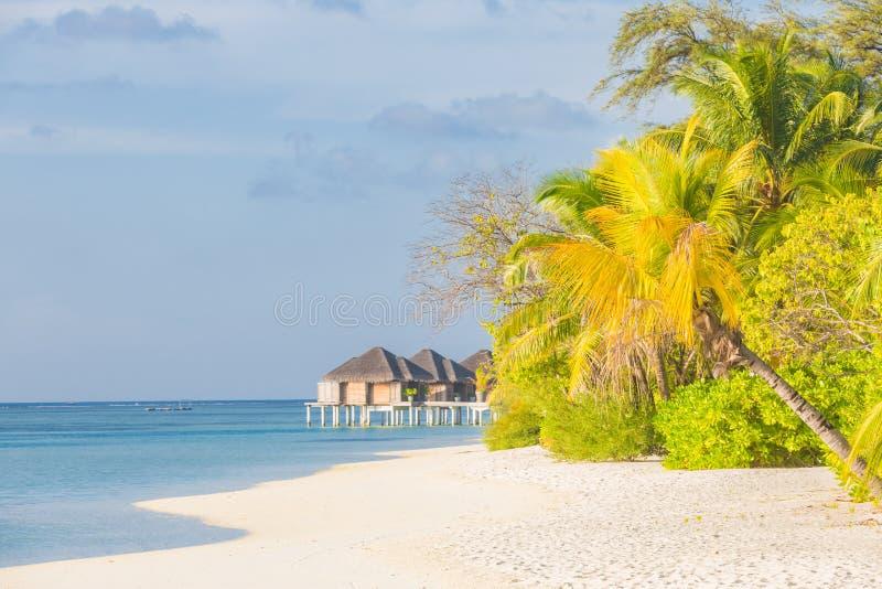 Isla tropical con las casas de planta baja del agua Tiempo soleado, palmeras y mar azul Concepto del paisaje de la libertad y de  imágenes de archivo libres de regalías