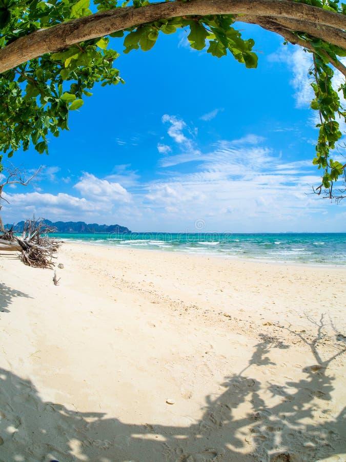 isla tropical dentro del atolón en el océano tropical en un día de verano imagen de archivo