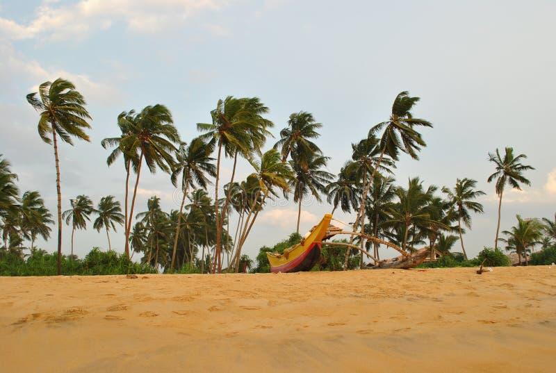 Isla tropical en el océano de Sri Lanka fotografía de archivo libre de regalías