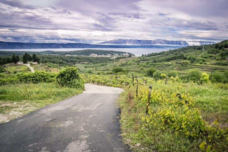 Isla vacía de Hvar del camino, Croacia imagen de archivo