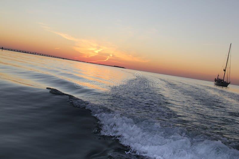 Islamorada Florida solnedgångfiske royaltyfria foton
