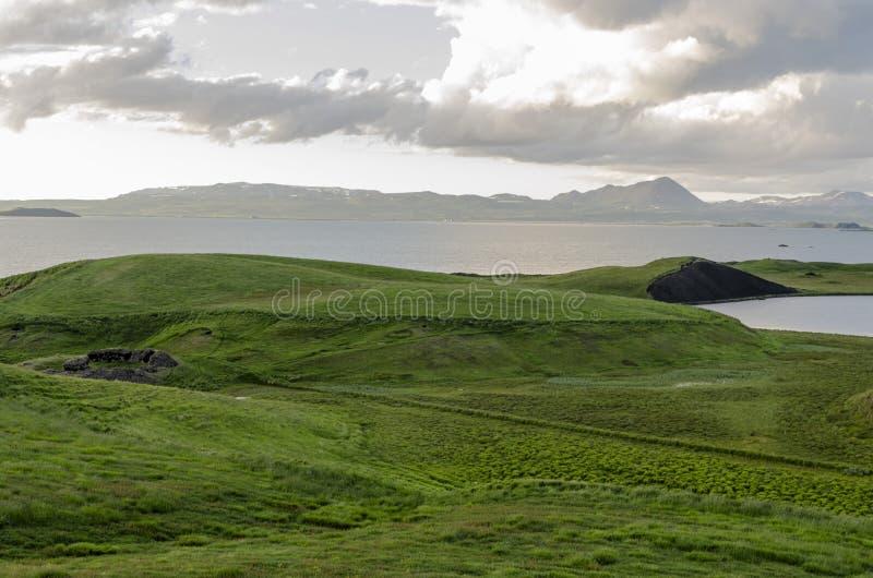 Island äng i sommar royaltyfri bild