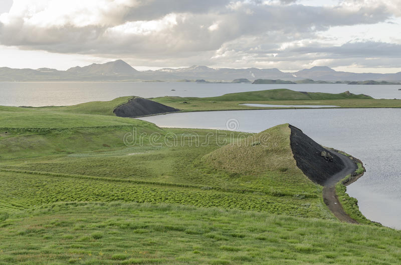 Island äng i sommar arkivbild