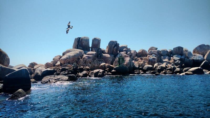 Island and beach stock photos