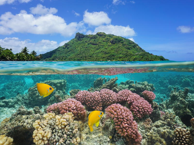 Island coral and fish underwater French Polynesia. Split image above and below water surface, landscape of Huahine island with coral and tropical fish underwater stock photography
