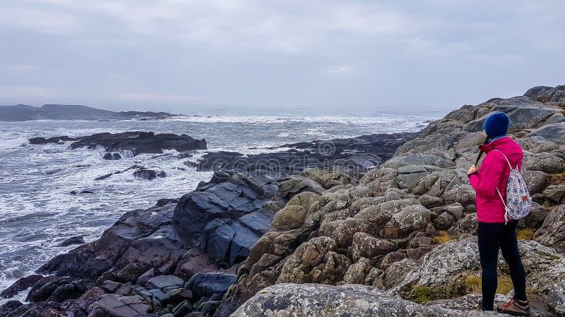 Island - eine Mädchenstellung in dem steinigen Ufer und dem Meer stockbild