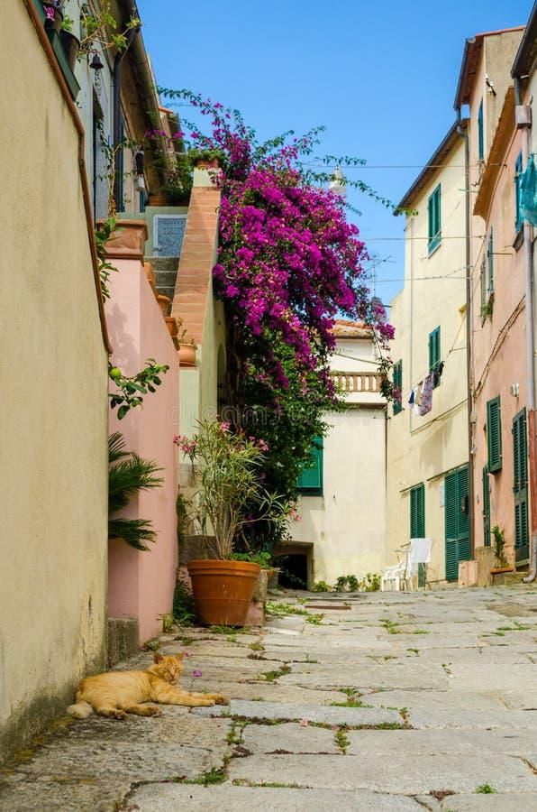 Island of Elba, alley in Sant'Ilario stock photography