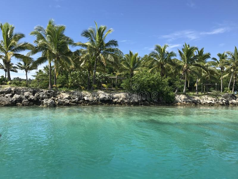 Island in the Fiji Islands. With palm trees and blue turquoise water royalty free stock photos