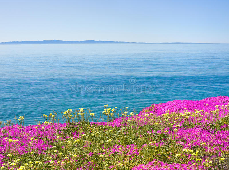 Download Island and Flowers stock photo. Image of channel, horizontal - 16295772