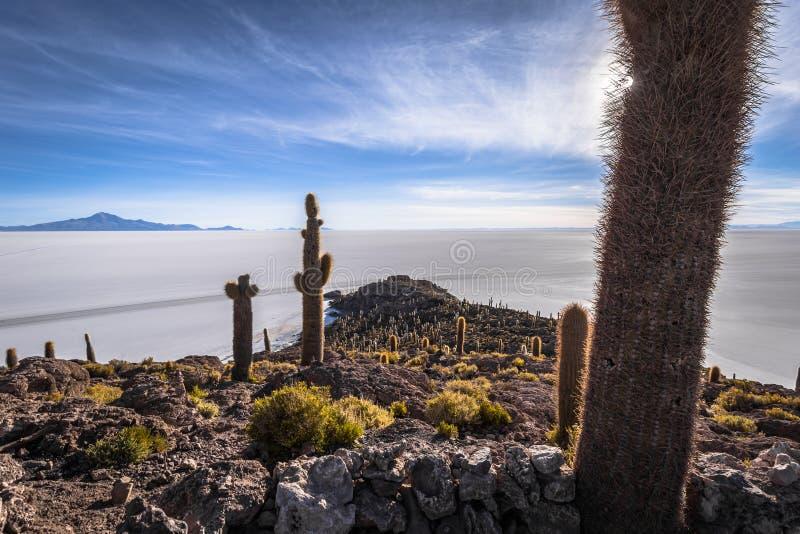 Island of Incahuasi at the Uyuni Salt Flats, Bolivia stock photo