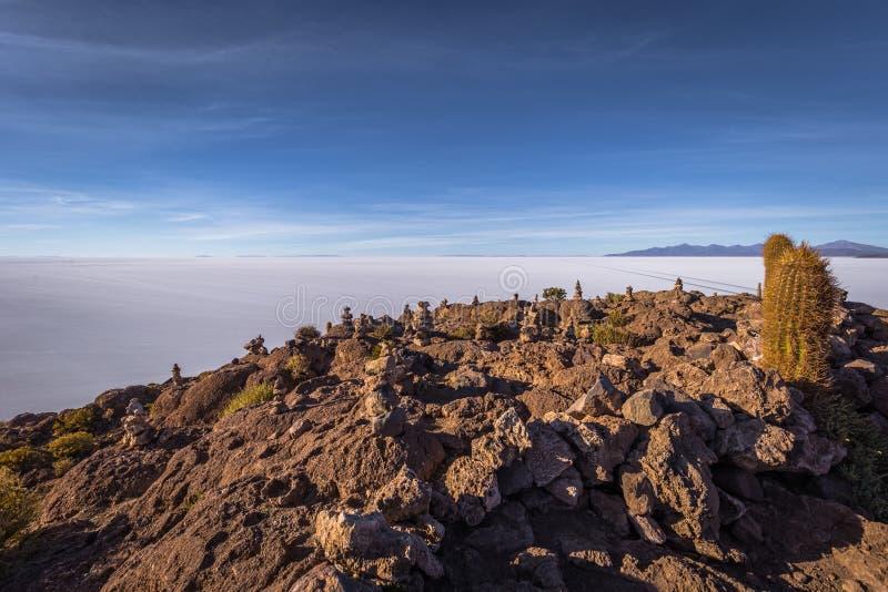 Island of Incahuasi at the Uyuni Salt Flats, Bolivia royalty free stock image
