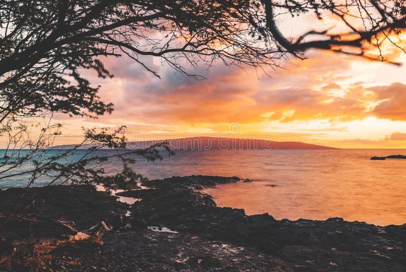 Maui royalty free stock image