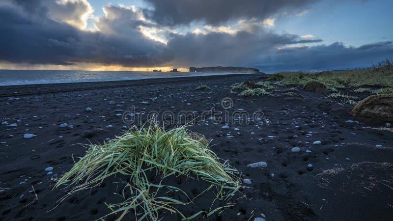 Island landskapaffärsföretag fotografering för bildbyråer