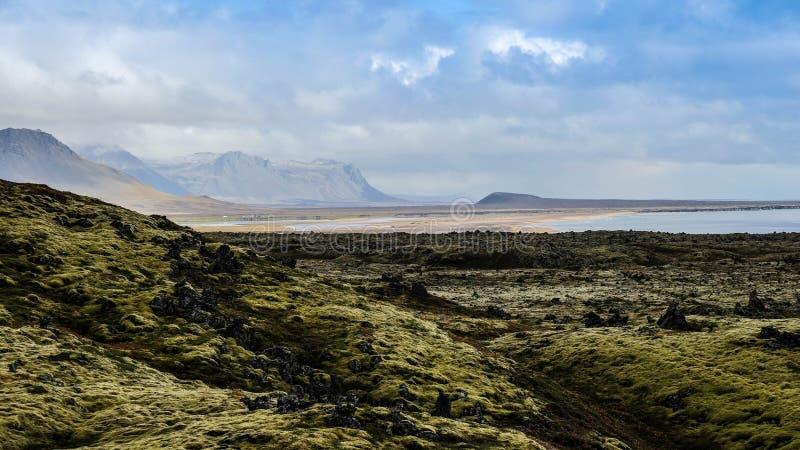 Island lavafält royaltyfri foto