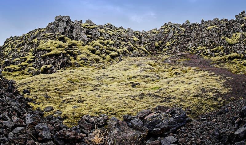 Island lavafält arkivbilder